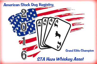 Whiskey's ASDR Grand Elite Title