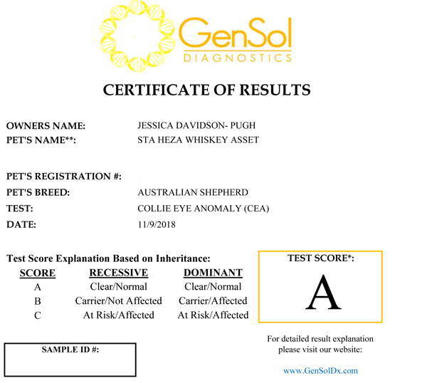 Whiskey's test certificate for CEA